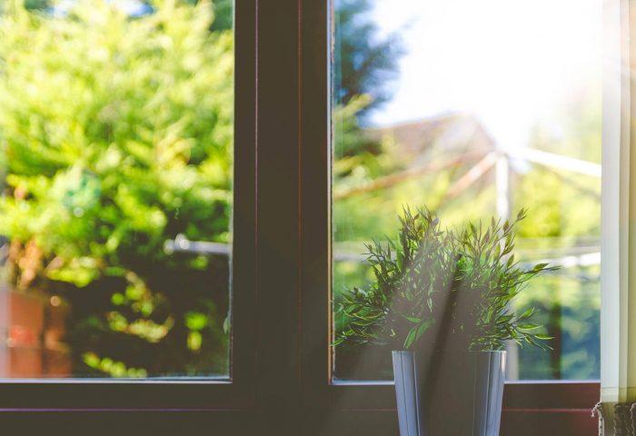 Fönsterputs med citron
